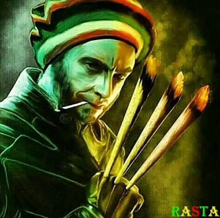 Rasta Wolverine fa sempre sognare. Immagine da Pinterest