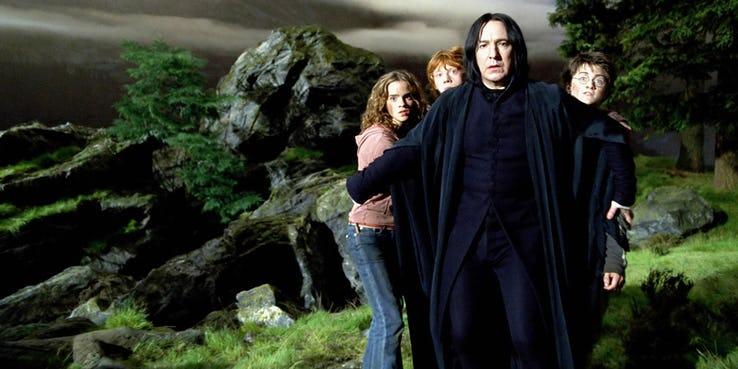 Severus Piton mamma chioccia è un'idea dataci dai film, da Alan Rickman e dalle fanfiction