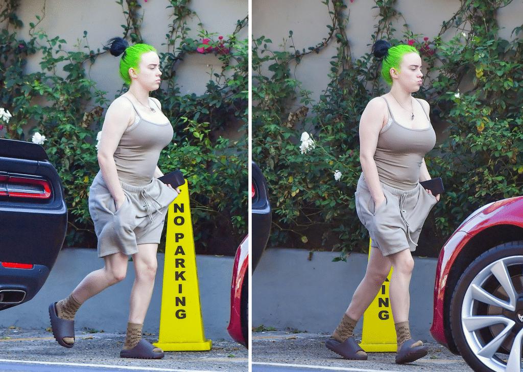 Billie Eilish paparazzi body shaming