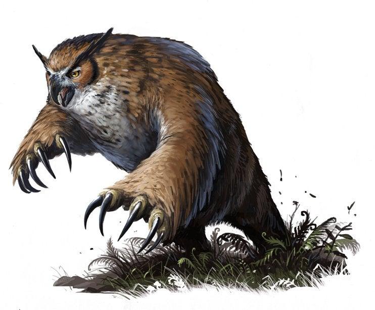 Un Orsogufo di Pathfinder