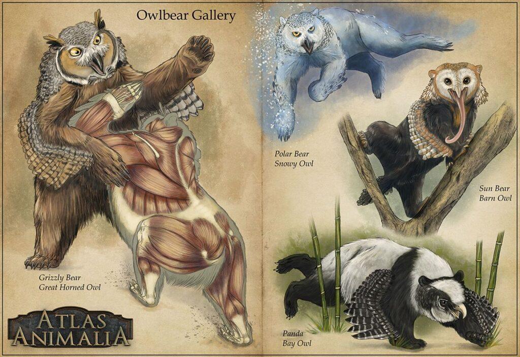 Le varianti di Orsogufo dell'Atlas Animalia